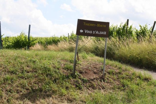 Vins et Crémant d'Alsace Thierry- Martin Img_2112