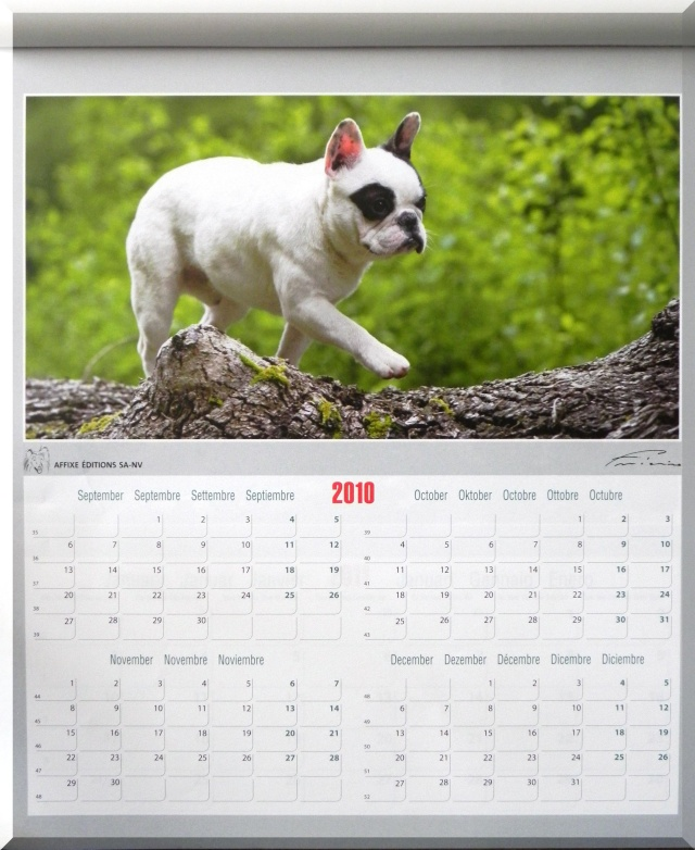 Vendredi 3 déc - Une photo de calendrier de l'Avent Dscn0028