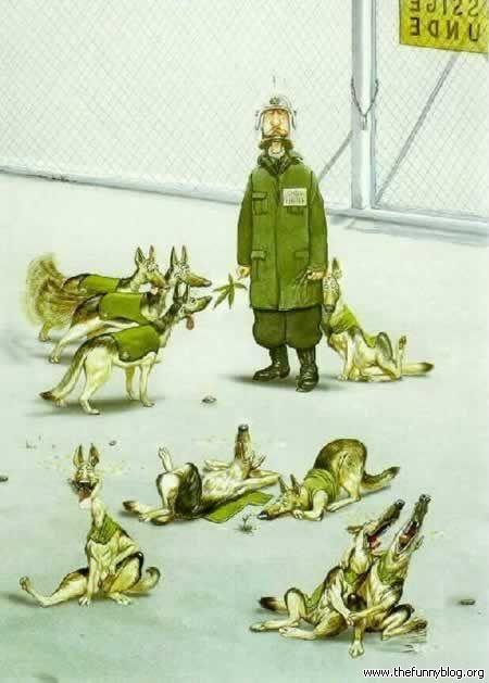 Dog Cartoons Dog-ma10