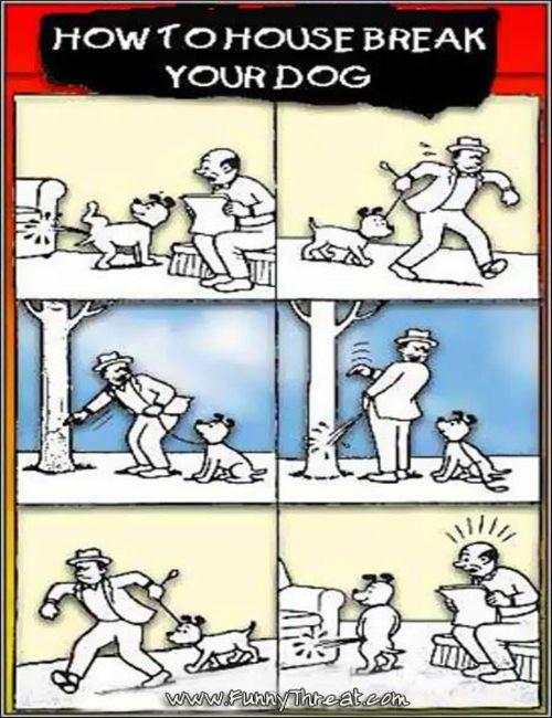 Dog Cartoons Dog_tr10