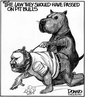 Dog Cartoons Donato10
