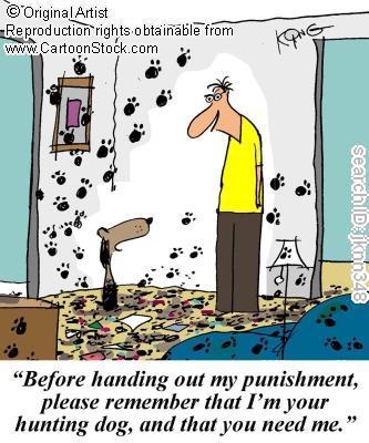 Dog Cartoons Jknn3410