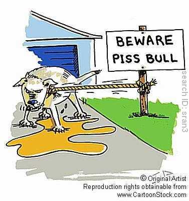 Dog Cartoons Sran3l10