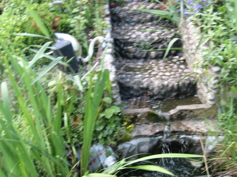 photo bassin de steven Img_0027