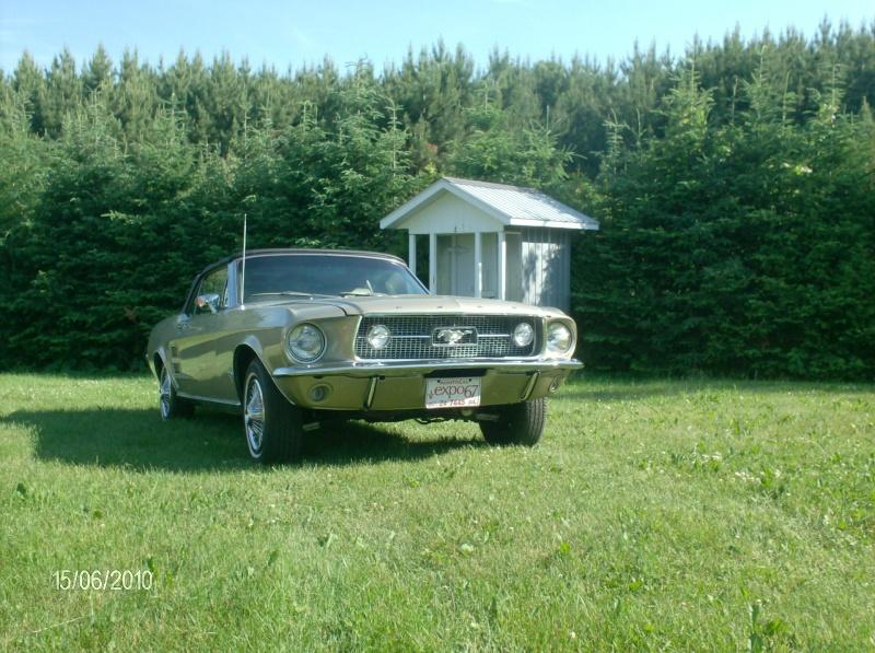 Ma Mustang 1967, 200ci 2010_105