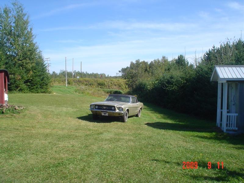 Ma Mustang 1967, 200ci Dsc03416