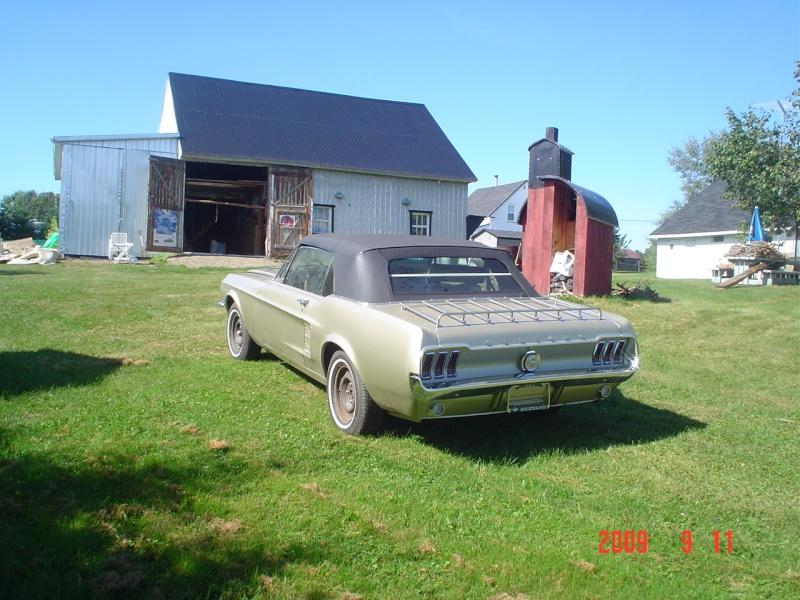 Ma Mustang 1967, 200ci Dsc03417