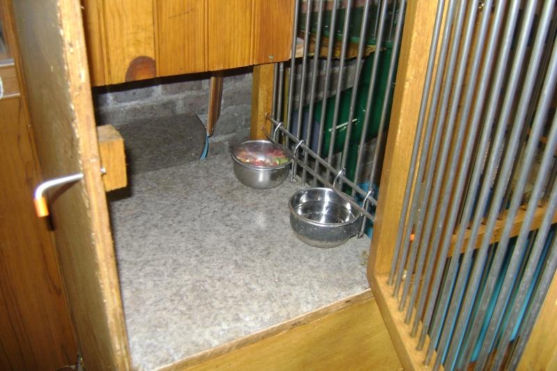 Leurs cages Dsc02811