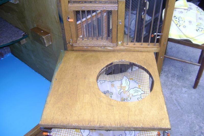 Leurs cages Dsc02812