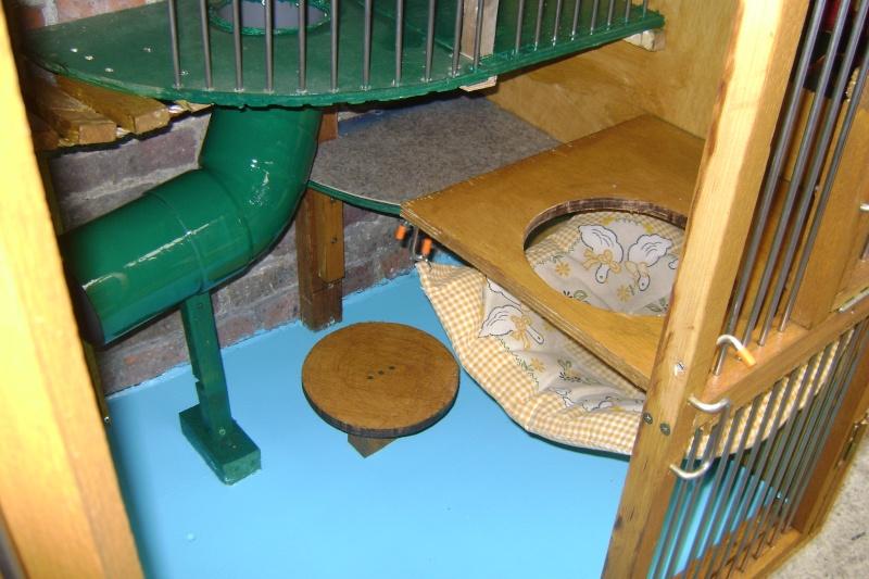 Leurs cages Dsc02917