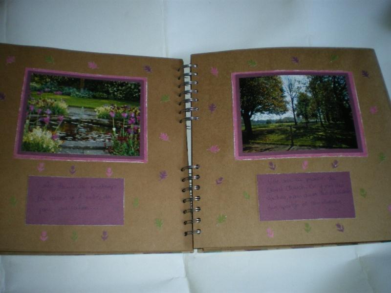 album couleur -fond craft Imgp9818