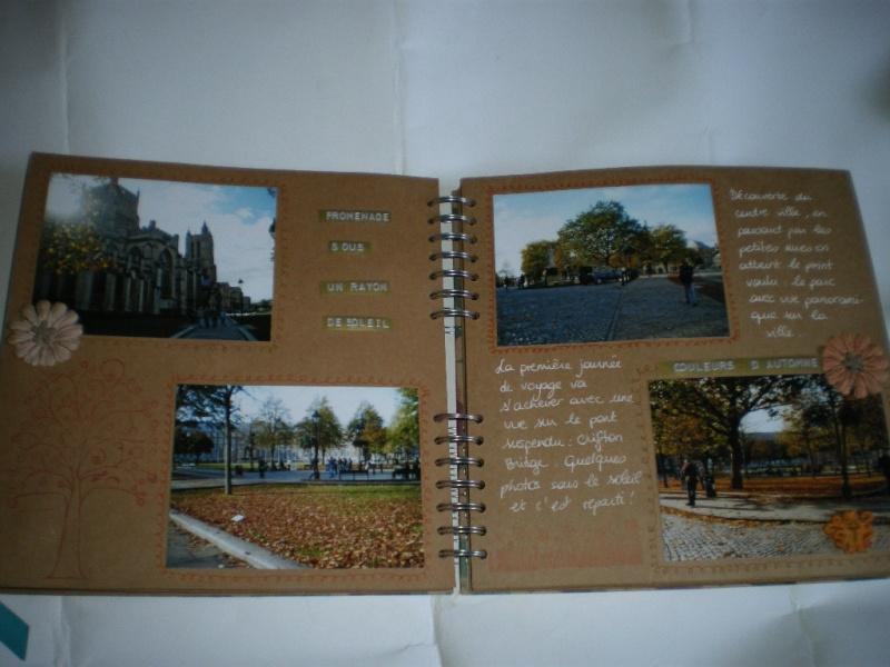 album couleur -fond craft Imgp9910