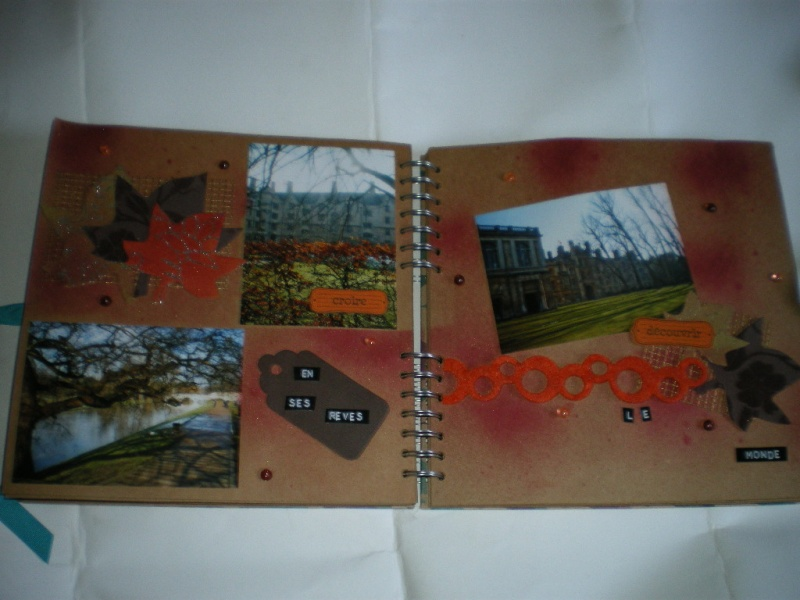 album couleur -fond craft Imgp9914