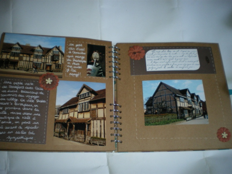 album couleur -fond craft Imgp9917