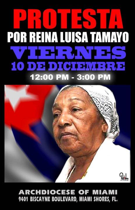 Protesta por Reina Luisa Tamayo 36276_10
