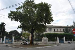 El lugar mas alto de Santiago de Cuba Alto210