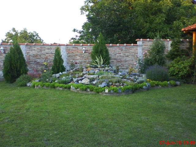 slike iz moje bašte & vrta Dsc04216