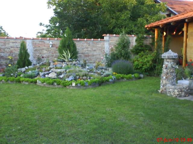 slike iz moje bašte & vrta Dsc04217