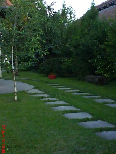 slike iz moje bašte & vrta Dsc04218