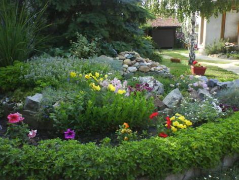slike iz moje bašte & vrta Haz_110