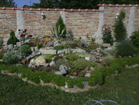 slike iz moje bašte & vrta Kam11