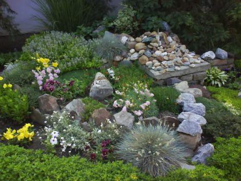 slike iz moje bašte & vrta Kam410