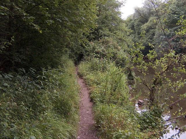 RAVeL 5 Ourthe Liege - Durbuy - Itinéraire N°7 - Sur la route des Ardennes 2008-010