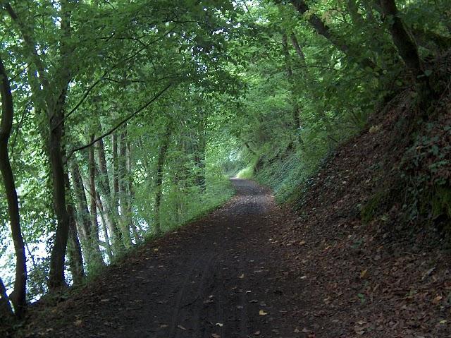 RAVeL 5 Ourthe Liege - Durbuy - Itinéraire N°7 - Sur la route des Ardennes 2008-011