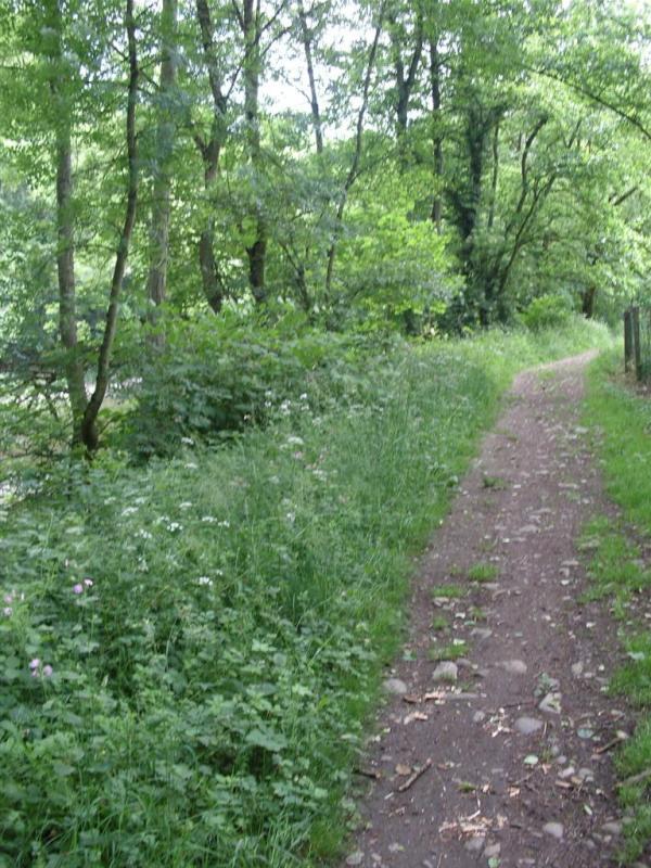 RAVeL 5 Ourthe Liege - Durbuy - Itinéraire N°7 - Sur la route des Ardennes Entre_10