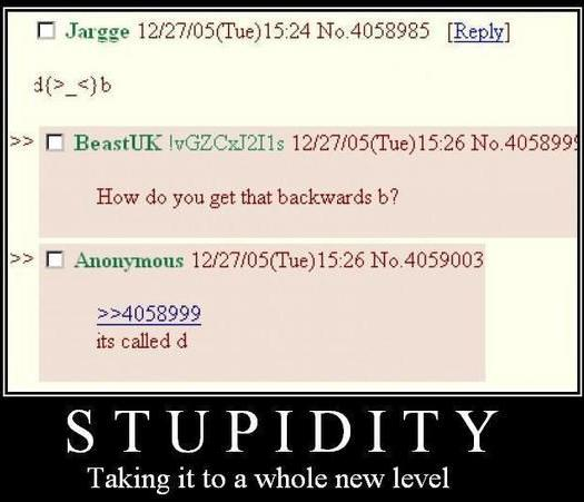 02/12/10 ~ i dont think any of us are this dumb Stupid11
