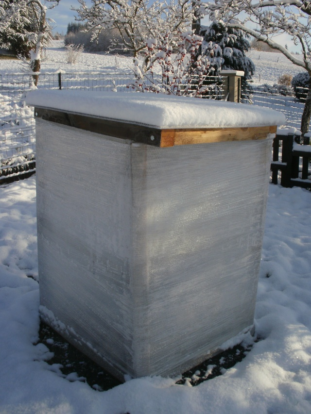 protection des plantes en periode hivernale P1010133