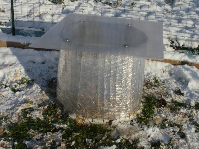 protection des plantes en periode hivernale P1010139
