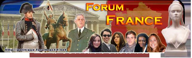 Forum France Politique : une démocratie virtuelle Banpub12