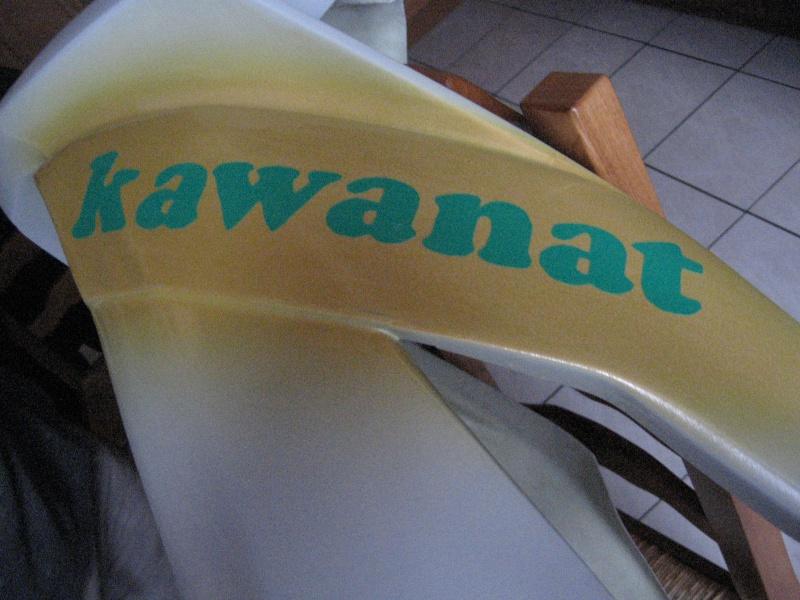 Naissance de kawanat Zx6_r_21