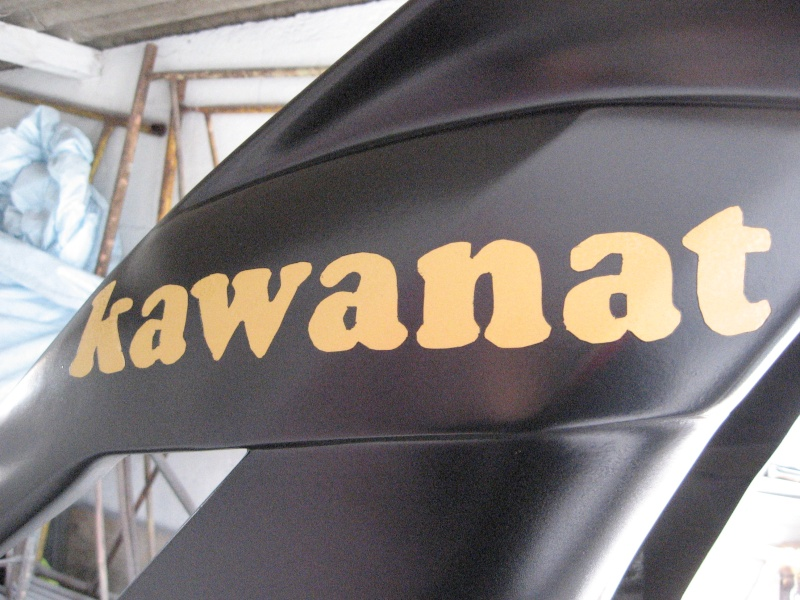 Naissance de kawanat Zx6_r_28