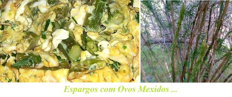 ESPARGOS COM OVOS MEXIDOS Esp-ov11