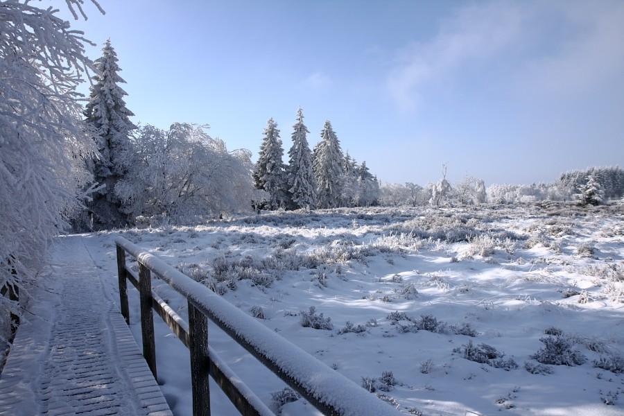 Fagnes sous le givre et la neige Img_2215