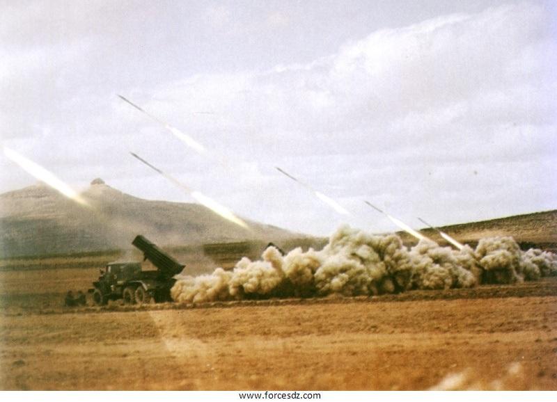 Armée Algérienne (ANP) - Tome XIV - Page 42 Image310