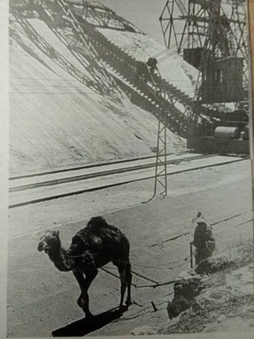 Transport Routier au Maroc - Histoire - Page 3 Img_2014