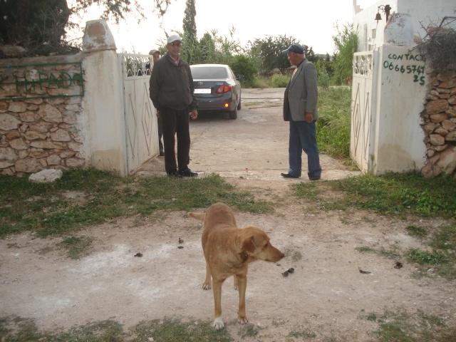 La maison d'Afoulouste ou ADDAR LAKBIRA Dsc04928
