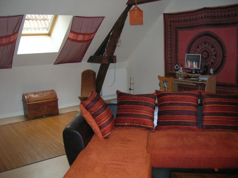 coussins de canapé abîmés Romora15