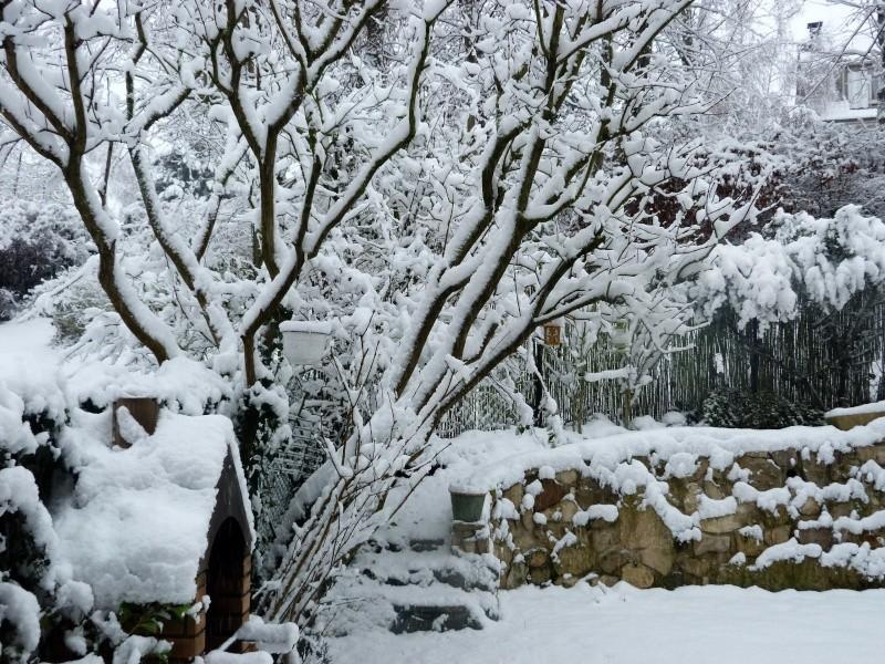 Paysages sous la neige - Page 2 P1000511
