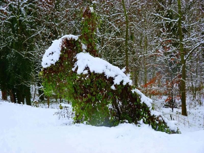Paysages sous la neige - Page 2 P1000513