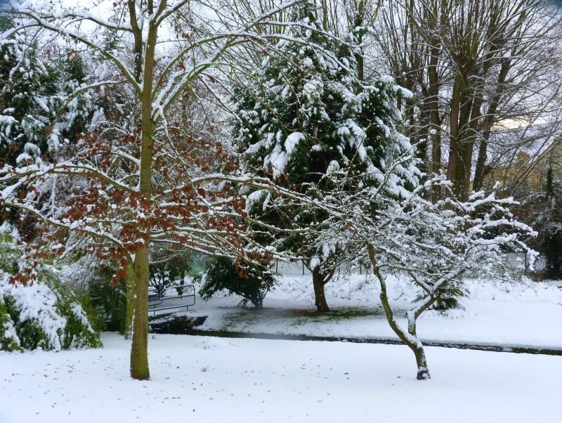 Paysages sous la neige - Page 2 P1000610