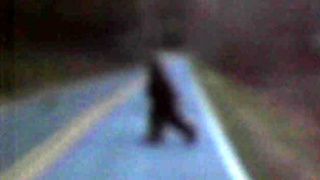 Cryptozoologie Golden Valley Church Road Thomas Byers Carolyn Wright bigfoot photographie forum cryptide mammifère knobby Usa Etats unis sasquatch hominidé inconnu Cleveland mars 2011