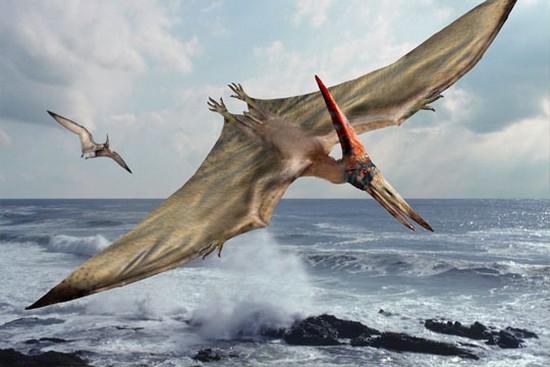 Cryptozoologie paléontologie survivance france Jean Ray ptérodactyle Pterodactylus ouessant reptile volant dinosaure