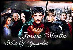 Merlin Forum Moc_co11