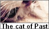 Un forum sur les chats d'Erin Hunter Button11
