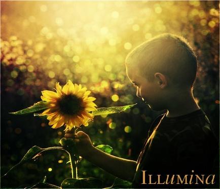 ♦---Illumina---♦ Illumi10