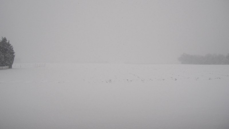 Il neige!!! - Page 3 Img_0513